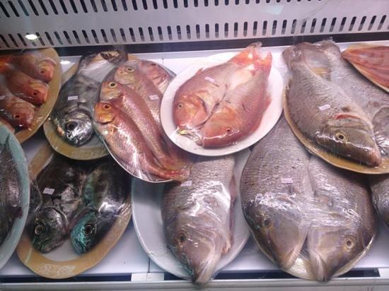 Turkish Diwan Restaurant : pick your fish!