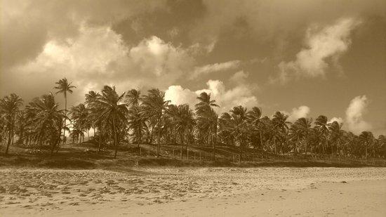 Pousada Luar Da Praia: ceu acu