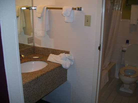 Quality Inn Historic East - Busch Gardens Area: Nice sink area