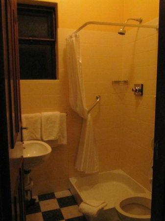 19th Green Killarney : Bagno - doccia con tendina