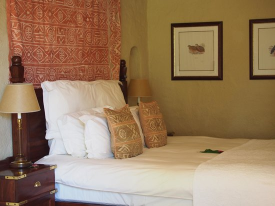 Chobe Game Lodge: The room