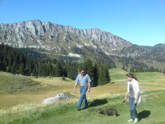 Hotel Alpenrose: Unzählige Wanderwege