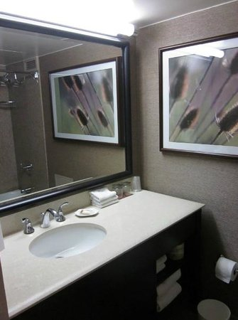 Sheraton Denver Downtown Hotel: Bathroom