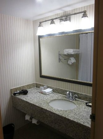 Sheraton West Des Moines Hotel: Bathroom