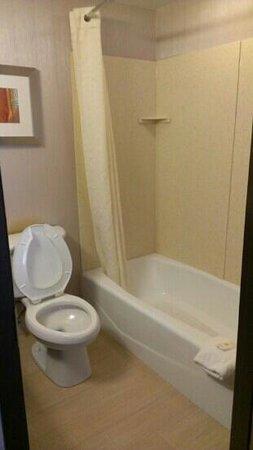 Comfort Inn: Nice size, clean bathroom.