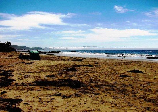 Cayucos Motel: Your Beach