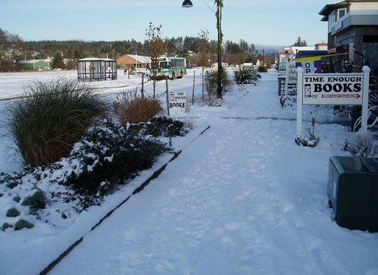 Port of Ilwaco Boardwalk: Snowy Ilwaco Marina.