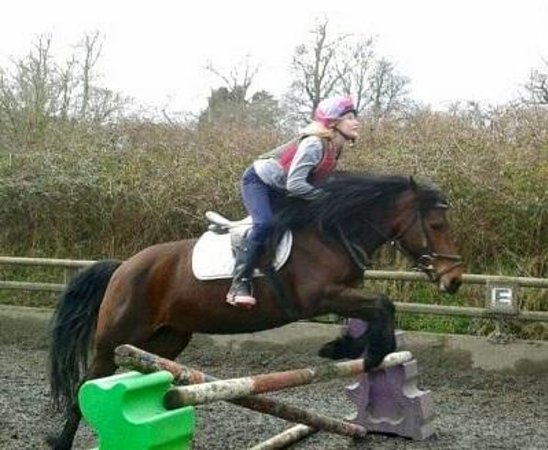 Chudleigh, UK: This is me jumping bramble, before I came to finlake I was very nervous with my jumping. But fin