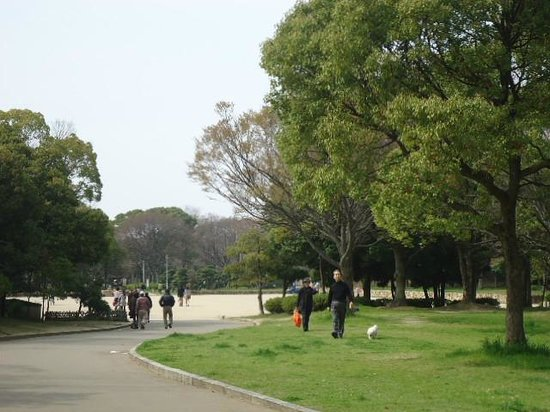 Daisen Park : PARK