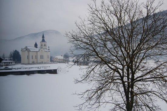 Bohinj ECO Hotel: landscape