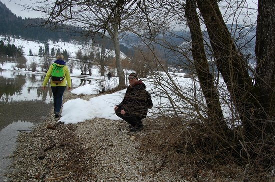 Bohinj ECO Hotel: walking