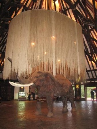 Safari Park Hotel: Reception area
