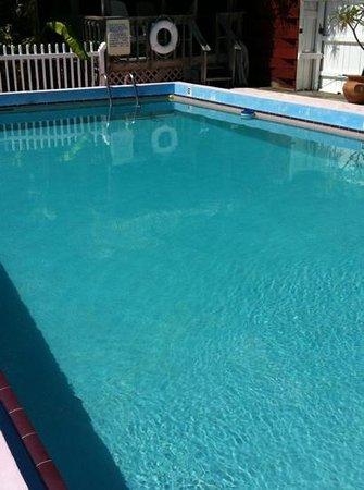 Sands of Islamorada: pool, hello sparkling clean