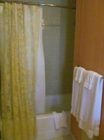 Washington Marriott Wardman Park: Bath was clean, good water pressure