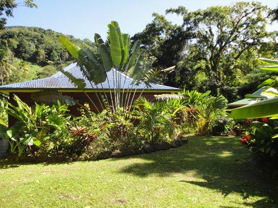 Ti Plèn Kréol : Vue bungalow dont on a oublié le nom (barbade ?)