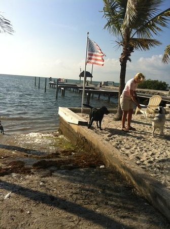 Sands of Islamorada: others at play
