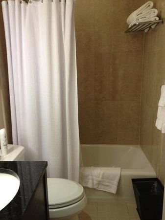Shelburne NYC–an Affinia hotel: small bathroom