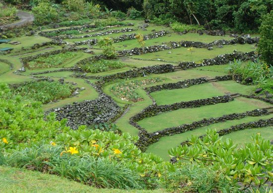 Terraces Of Limahuli Picture Of Limahuli Garden And
