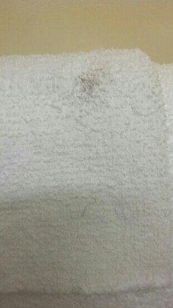 Rodeway Inn & Suites Newport News: the dirty linen. .