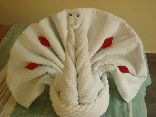 Hotel Real del Mayab: towel :)