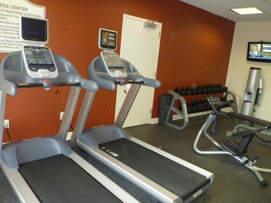 Hilton Garden Inn Houston / Bush Intercontinental Airport: Workout Area/Gym