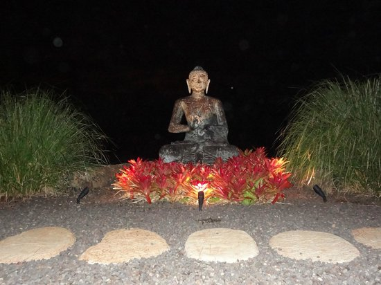 Lumeria Maui Retreat: Buddha