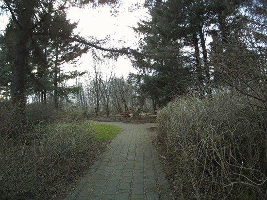 Laugardalur Park: Grasagardur