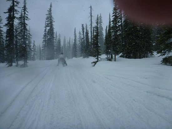 Rocky Mountain Riders Snowmobile Tours and Rentals: Snowy accent to the upper bowl on the Kicking Horse Tour