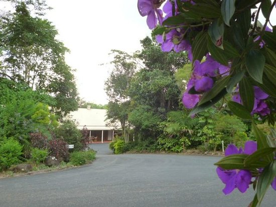 Malanda Lodge Motel: Looking towards the Restaurant, from the Garden entrance