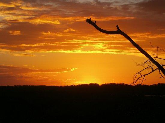 Tin Can Bay Motel: sunset near Barnacles