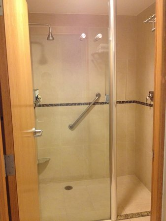 Four Points by Sheraton Mexico City Col. Roma: Shower Area/Room 313