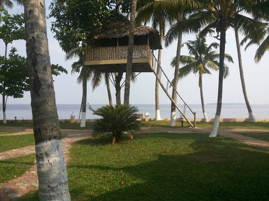 The World Backwaters: Machaan .... front view from the villa