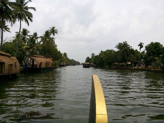 The World Backwaters: Backwater Ride in Shikara.... provided by Hotel (Chargeable)