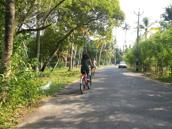 The World Backwaters: Exploring Village on bicycle ...