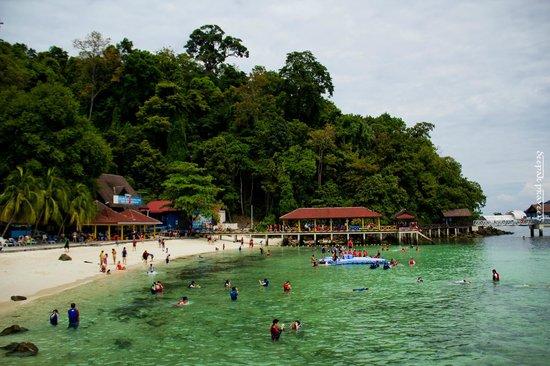 Langkawi Coral : Pulau Pyar
