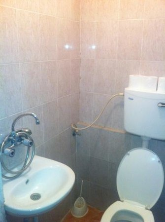 New Palm Hotel & Hostel: the bathroom, not working