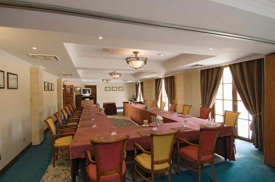 Elysium Hotel: Templar conference room