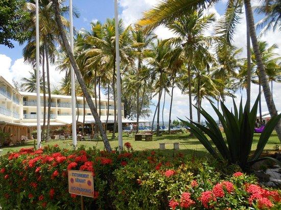 Carayou Hotel & Spa: le jardin