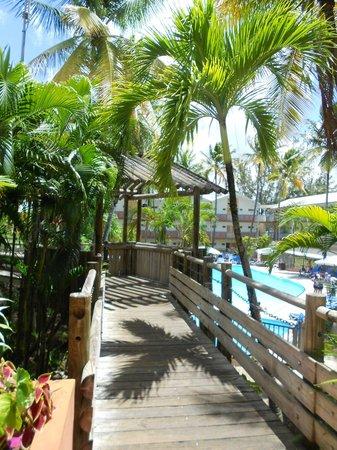 Carayou Hotel & Spa: l'accès au bar