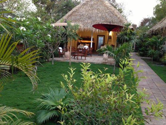 Oasis Hotel : Garden