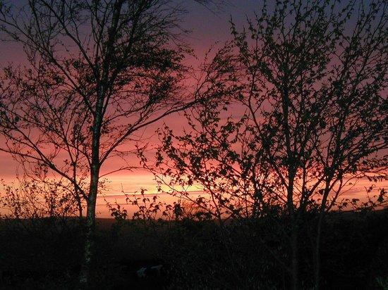 Orchard Farm Cottage Holidays: sunset