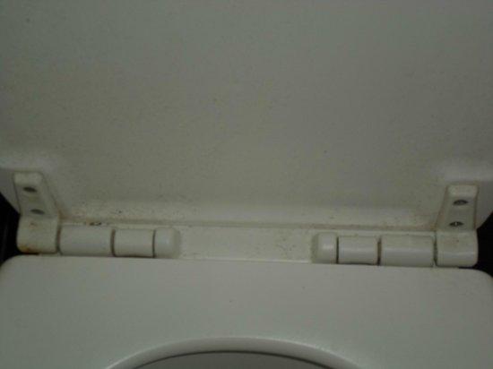 Bicycle Hotel: Hygienische Zustände Toilette