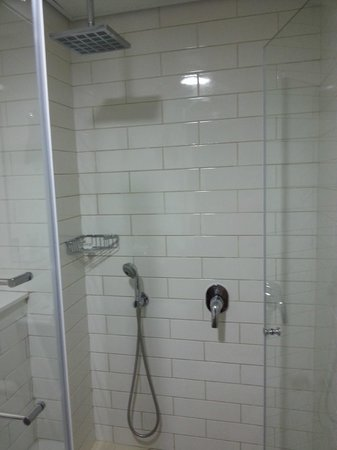 The Embassy Hotel: great shower head!