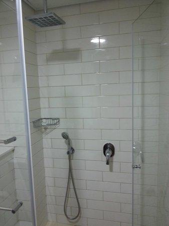 The Embassy Hotel Tel Aviv: great shower head!