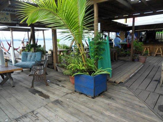 Casa Verde Hostel & Guesthouse: receptie/bar/relaxplek aan het water