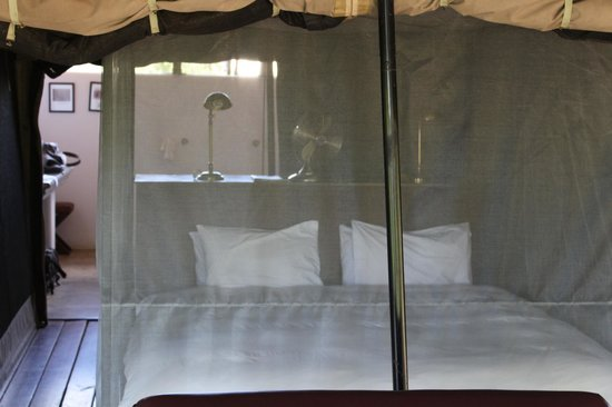 Honeyguide Tented Safari Camps: The sleeping area allows the sounds of the night to be experienced