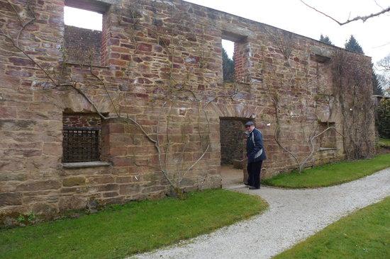 Tregrehan Garden : Some ruins