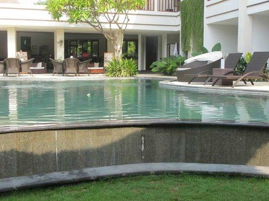 Villa Diana Bali: Pool