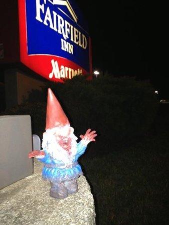 Red Lion Inn & Suites Dayton: zombie gnome likes Fairfield!