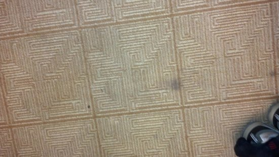 Hyatt Place Columbia : Stains in carpet